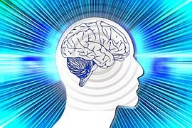 brain rays