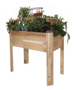 elevated garden planter